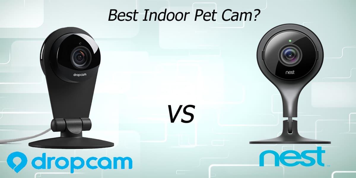 What's The Best Indoor Pet Cam? (Dropcam Pro vs Nest ...